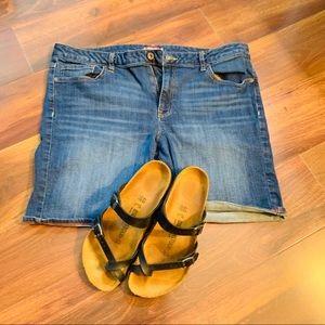 Tommy Hilfiger Women's Size 16 Jean Shorts